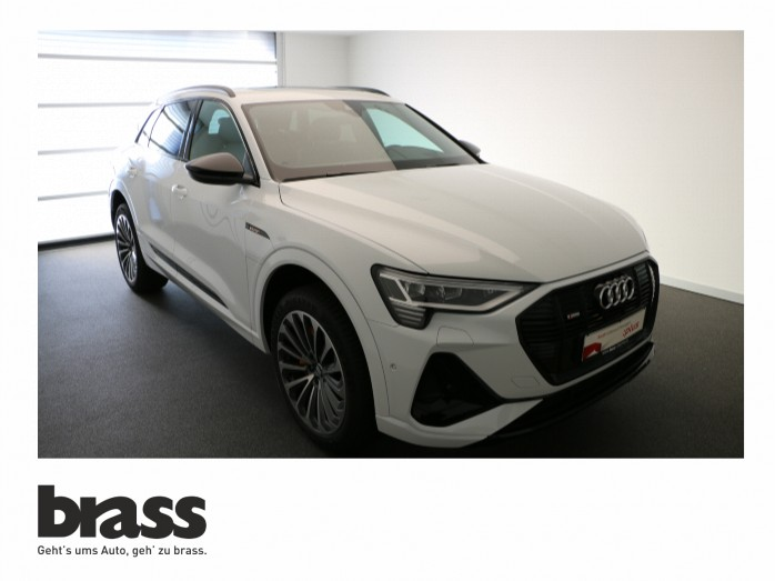 Audi e-tron   251408
